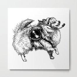 Scientific Pomeranian Metal Print