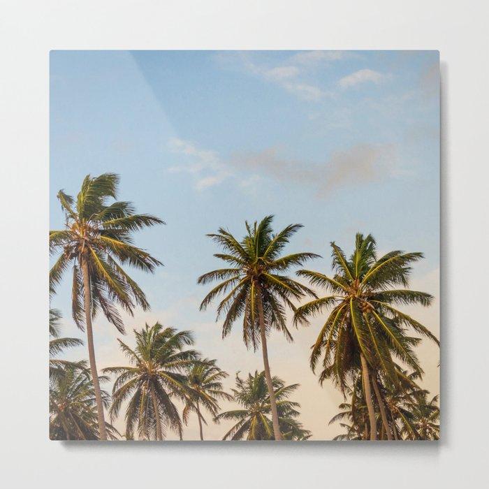 Chilling Palm Trees Metal Print