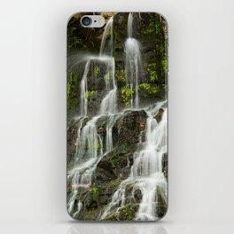 Ho Opi'i Waterfall  iPhone Skin