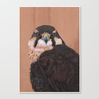 falcon Canvas Prints featuring Falcon by LouiseDemasi