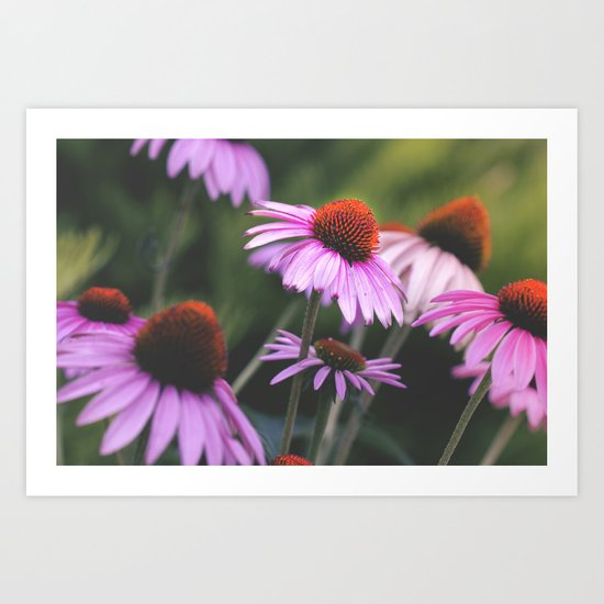 Dash of Spring Art Print