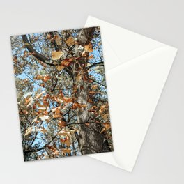 Autumn Scenes IV Stationery Cards