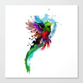 Watercolor Quetzal  Canvas Print