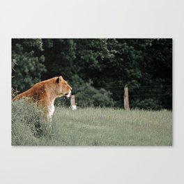 Loud and Proud Canvas Print