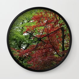 Contrasts of nature Wall Clock