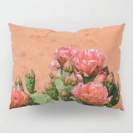 Cacti in Bloom - 5 Pillow Sham