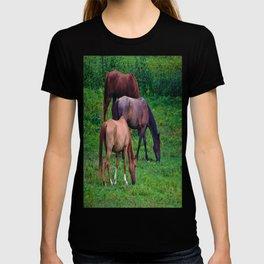 Grazing Horses T-shirt
