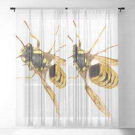 Wasp Art Sheer Curtain