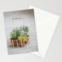 Potted Herbs on Gray Backdrop Stationery Cards