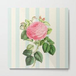Pink Rose On Blue Stripes Metal Print