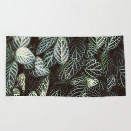 Botanical Gardens Zebra Leaf #398 Beach Towel