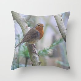 Redbreast Throw Pillow