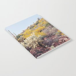 Arizona Color Notebook