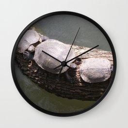 Tree Turtles Wall Clock