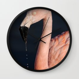 Flamingo After Emerging From The Water Wall Clock