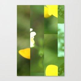 crash_ 18 Canvas Print
