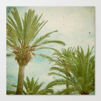 palm trees Canvas Prints featuring Palm Trees by Cassia Beck