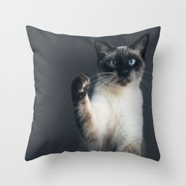 Satisfaction Brought It Back Throw Pillow