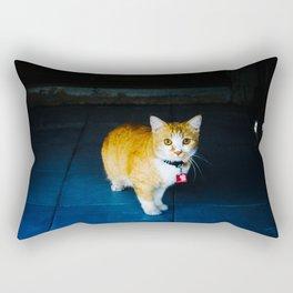 Cat in Ayutthaya Rectangular Pillow