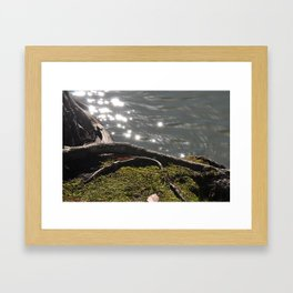 Mossy lake shore Framed Art Print