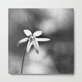 Black and White Flower Photography, Dark Grey Nature Photo, Gray Neutral Modern Floral Botanical Metal Print