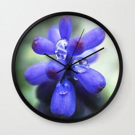 Muscari flowers Wall Clock
