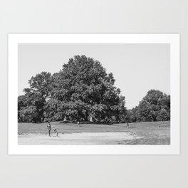 Prospect Park Art Print