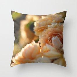 Owen Rose Garden Throw Pillow