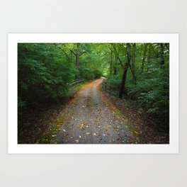 On the Path to Fall Art Print