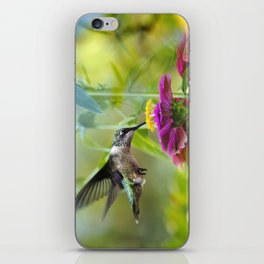 Sweet Hummingbird iPhone Skin