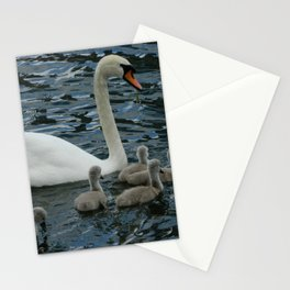 Mute Swan & Cygnets Stationery Cards