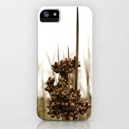 Sharp Rush iPhone Case