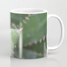 Agave Pads & Spines Coffee Mug