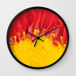 Matsumoto Aster Macro Wall Clock