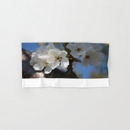 Close Up Of White Cherry Blossom Flowers Hand & Bath Towel