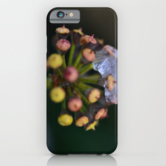 Snow On The Wild Ivy iPhone & iPod Case