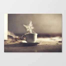 Buttertea Canvas Print