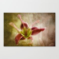 Misshapen Beauty Canvas Print