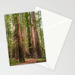 Humboldt Redwoods, Avenue of the Giants Photography, Redwood Forest Art, Person in Photo Art, Enchanted Magical Woodland Stationery Cards