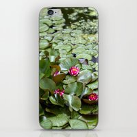 lotus flower iPhone & iPod Skins featuring Lotus by Melissa Schantz Photography