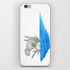 PIKA IN AN ISLAND iPhone & iPod Skin