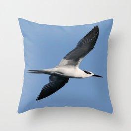 Sandwich Tern In Flight Vector Throw Pillow