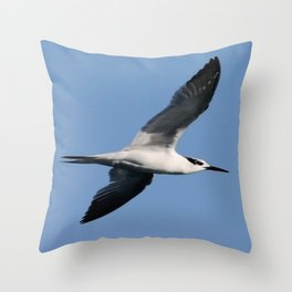 Sandwich Tern In Flight Vector Throw Pillow