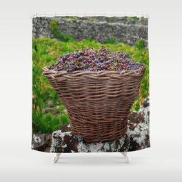 Grape harvest Shower Curtain