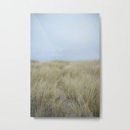 Beach Trails Metal Print