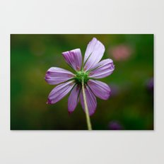 Stop and Simply Be Canvas Print