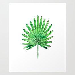 Tropical Palm Leaf - Nature Art Print