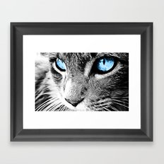 Kitty Blue Eyes Framed Art Print
