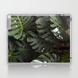 Monstera - botanical photography Laptop & iPad Skin