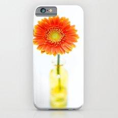 Aglow in Wintertime iPhone 6s Slim Case